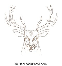 hand drawn deer head with horns vector illustration - hand...