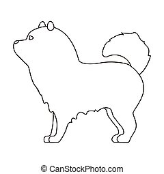 Chow-chow icon in outline style isolated on white...