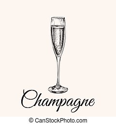 Champagne Glass Hand Drawing Vector Illustration Bubbles....