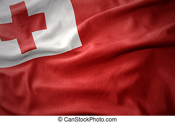 waving colorful flag of Tonga.