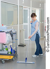 floor care cleaning services with washing mop in clean...
