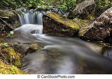 pequeño, conexión en cascada, cascadas