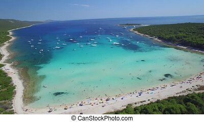 aerial view of beautiful sandy beach Sakarun - Beautiful...