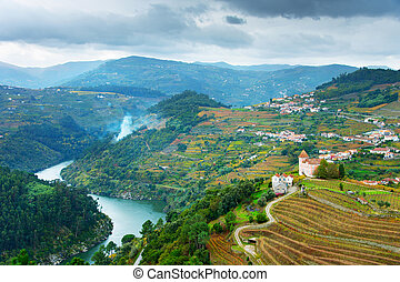 Porto province, Portugal - View of Douro river, wineyards...