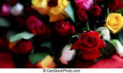 Bouquet of colorful roses on black background. 1920x1080 -...