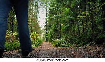Man With Backpack Walks On Forest Path - Dolly shot of hiker...