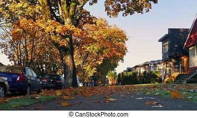 Suburbs In The Fall With Leaves Covering Ground - Pretty...
