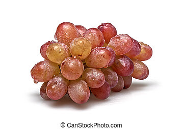 One sort of grapes freshly washed - One sort of grapes,...