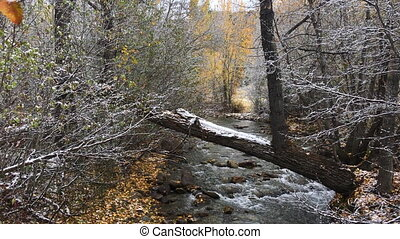First Snow beginning of the Winter - North Fork Big Wood...