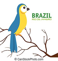 bird macaw blue and yellow brazil vector illustration eps 10