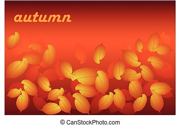 golden autumn,autumn leaf elm,