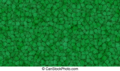 many motion green bio cells backgrounds