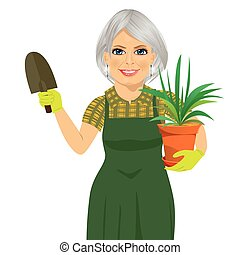 senior gardening woman holding green Chlorophytum plant in the pot and trowel