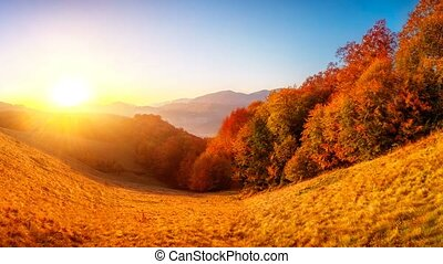Colourful autumn landscape - Exploring beauty world:...