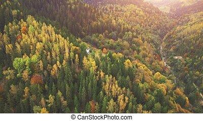 Aerial Flight in Carpathian mountains. 4k, 30fps - Aerial...