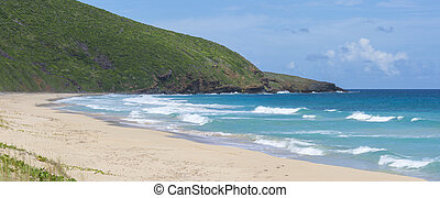 Panoramic tropical Caribbean beach - Panoramic of waves from...