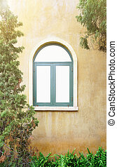 windows in Italian style with plant and window in morning...