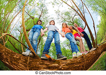 Kids standing together on trunk of fallen tree - Bottom view...