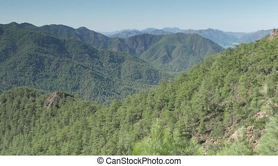Mountain range covered by pine forest with a distant sea...