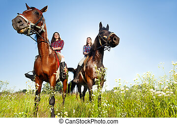 Two female equestrians with purebred brown horses