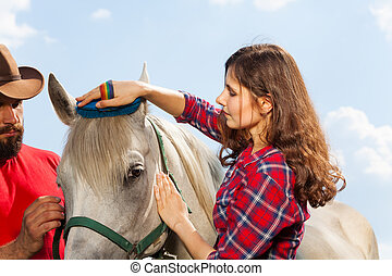 Young woman brushing her beautiful white horse - Close-up...