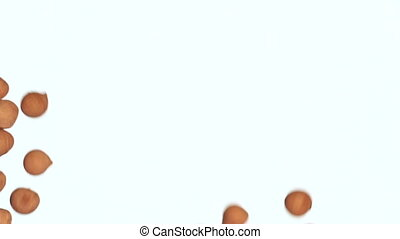 Falling chickpeas on a white background fills the screen. -...