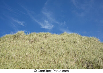 large green sand dunes