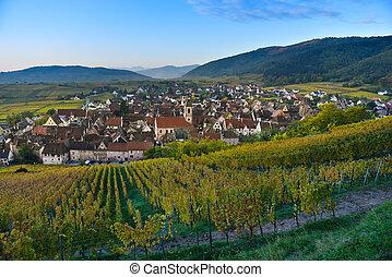 Alsace village, with vineyard, Riquewhir. France