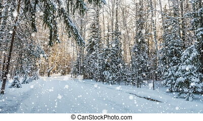 number 2017 Falling snow in the winter forest, CINEMAGRAPH, loop, 1080p