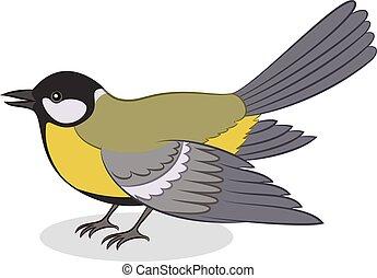 Bird Titmouse, Isolated - Realistic Cartoon Bird Titmouse,...