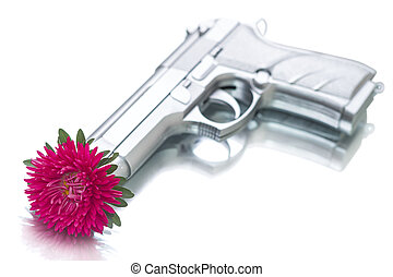 Red aster in the barrel handgun. Focus on a flower. Isolated...