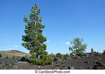 Craters of the Moon, USA landmark