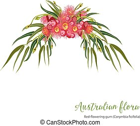 Red flowering Gumtree Design - Red-flowering gum tree...