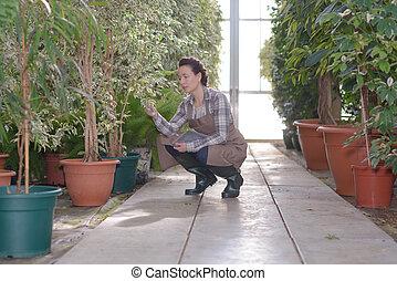 woman gardener working in garden store