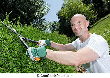 middle-age man grass cutting in the garden