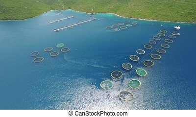Aerial view of fish farm near the island of Dugi otok -...