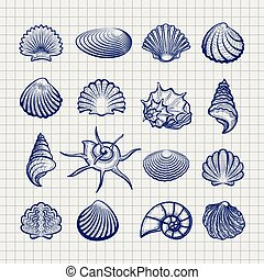 Ball pen sketch sea shells on notebook background vector