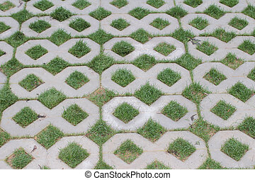 Permeable Pavers. View from above. - the Permeable Pavers....