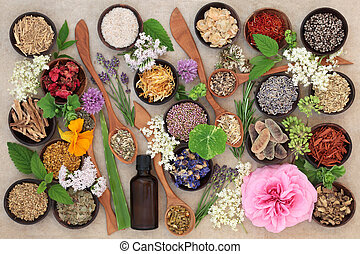 Flower and Herb Selection - Flower and herb selection used...