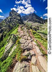 Mountain trail to Ko?cielec in summer, Tatra Mountains,...
