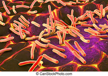 Rod shaped bacteria - 3D illustration of rod-shaped...