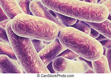 Rod shaped bacteria - Bacterial infection. Rod-shaped...