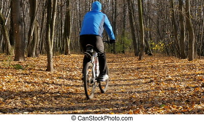 A man riding in the park on a bicycle. Yellow autumn. -...