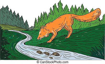 Fox Drinking River Woods Creek Drawing - Drawing sketch...