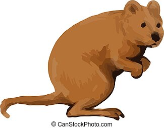 Quokka Side Watercolor - Watercolor style illustration of a...