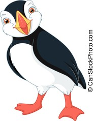 Atlantic Puffin - North bird on a white background