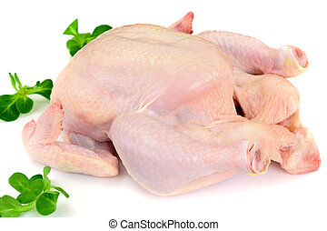 The Split Carcass of Raw Chicken. Isolated on White. Studio...