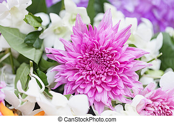 Bouquet of flowers Purple chrysanthemums with orchid -...