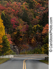 Wall of Trees Changing Color around bend in Blue Ridge...
