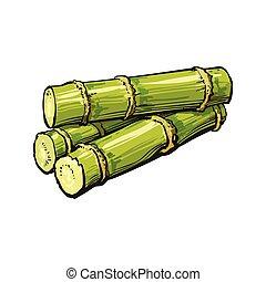 Pile of fresh raw green sugar cane
